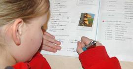 Bijles basisonderwijs